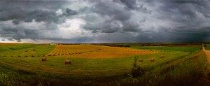 Hay ya Prairie field!